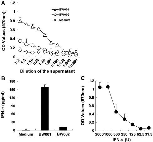 """BW001 stimulates human PBMCs to produce strong anti-SARS-CoV activity. (A) The supernatants of human PBMCs treated with BW001 or BW002 were used to protect Vero E6 cells from challenge of 10× TICD50 SARS-CoV (see Materials and methods ). The dose of the stimulator was 6 μg/ml. Each symbol represents mean OD values ± SD. Each curve represents anti-SARS-CoV activity induced with or without CpG ODN. The result showed that BW001 could strongly stimulate human PBMCs to produce anti-SARS-CoV activity. (B) IFN-α contents in the supernatants used for anti-SARS-CoV were determined by ELISA method. Each column represents level of IFN-α induced with or without CpG ODN. BW001 could stimulate human PBMCs (3 × 10 6 /ml) to produce 160 pg/ml IFN-α that was much high than that induced by BW002 and medium. (C) Anti-SARS-CoV activity of recombinant IFN-α2b. """"U"""" represents the international unit of IFN-α2b. Data from one representative experiment of three are shown."""