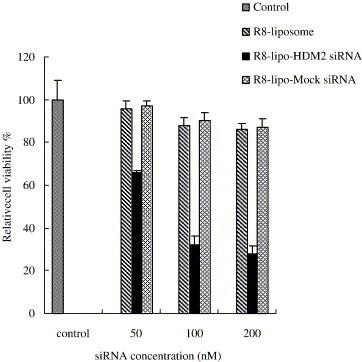 Effect of HDM2-siRNA in R8-liposomes on the growth inhibition of SK-MES-1 cells. Cells were treated using R8-lipo-HDM2-siRNA and R8-lipo-mock siRNA, where the siRNA concentrations varied from 50 to 100 and 200 nM, the corresponding lipid concentrations were from 7.5 to 15 and 30 μg/ml. Cell viability in R8-liposomes-free medium was taken as 100%.