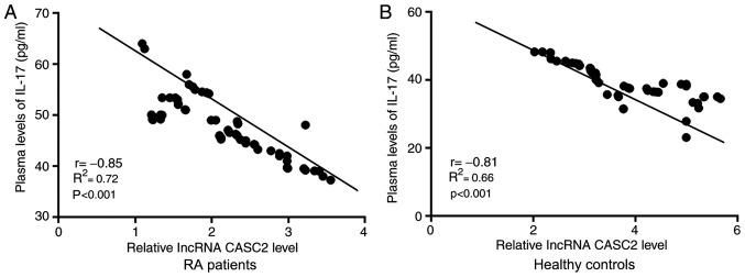 Plasma levels of lncRNA CASC2 and IL-17 are significantly and inversely correlated in both RA patients and healthy controls. Relative expression of lncRNA CASC2 was normalized to the patients with the lowest expression level. Pearson's correlation coefficient showed that plasma levels of lncRNA CASC2 and IL-17 were significantly and inversely correlated in both (A) RA patients and (B) healthy controls. CASC2, lncRNA cancer susceptibility candidate 2; IL-17, interleukin-17; RA, rheumatoid arthritis.