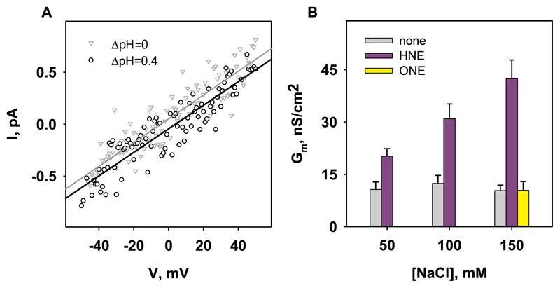 Influence of HNE-DOPE adducts on Na + and H + translocation. A. Representative current-voltage measurements in the presence (grey triangles) and absence (white dots) of a pH gradient of 0.4. The voltage shift is the difference in the x-axis intersection values of both measurements. The membranes were composed of DOPE:DOPC:CL (45:45:10 mol%). The buffer solution contained 50 mM Na 2 SO 4 , 10 mM MES, 10 mM TRIS, and 0.6 mM EGTA at 32°C and pH=7.32. B. Influence of the ionic strength of the buffer solution on total membrane conductance (Gm) in the presence of HNE or ONE. The membrane were composed of DOPE:DOPC (50:50 mol%). Besides NaCl, the buffer solution also contained 10 mM MES and 10 mM TRIS at 32°C and pH 7.32. The concentrations of lipids and RAs were 1.2 mg/ml and 0.84 mM, respectively.