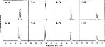 Fraction analysis of adjacent fractions at beginning and end of product appearance following preparative reversed-phase (RP)-high-performance liquid chromatography <t>(HPLC)</t> of 100 mg (top panels) and 200 mg (bottom panels) of synthetic 26-residue amphipathic <t>\documentclass[12pt]{minimal}</t> \usepackage{amsmath} \usepackage{wasysym} \usepackage{amsfonts} \usepackage{amssymb} \usepackage{amsbsy} \usepackage{mathrsfs} \usepackage{upgreek} \setlength{\oddsidemargin}{-69pt} \begin{document}$\alpha$\end{document} -helical antimicrobial peptide. Column, conditions of preparative RP-HPLC and fraction analysis, and peptide sequence described under Subheading 3.6.1 . P denotes desired product.