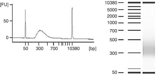 Analysis of post-enrichment TruSeq RVP RNA Access library using Agilent 2100 Bioanalyzer and DNA 7500 kit