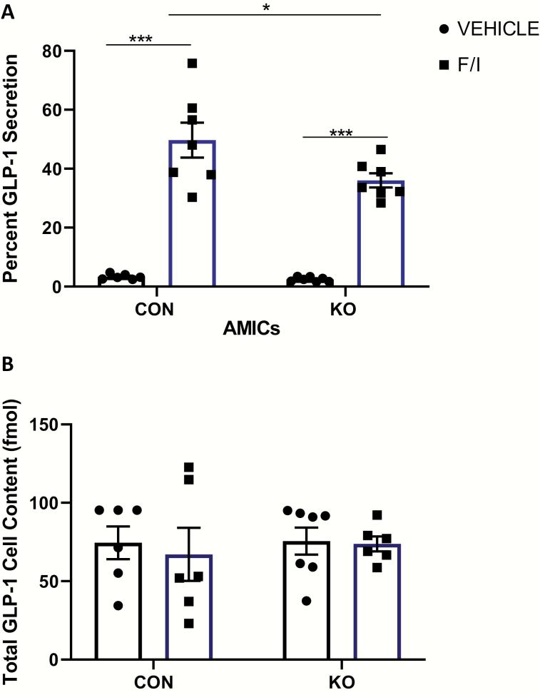 KO of Stxbp1 in the primary L-cell impairs GLP-1 secretion ex vivo. GLP-1 secretion assay in primary adult mouse ileal crypt cultures from L-cell Stxbp1 KO and control mice. Cells were treated for 2 hours with 50 µM forskolin (F) plus 50 µM IBMX (I) or vehicle alone (control). (A) Percent GLP-1 secretion and (B) total cell content of GLP-1. (n = 6–7). * P