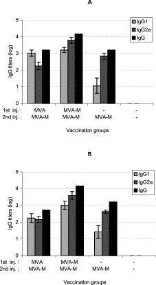 Humoral responses after MVA-M inoculation into naive or MVA-immunized mice. Animals received10 8 pfu of MVA or MVA-M or were non-inoculated. Two weeks later (A) or 4 weeks later (B), they all received 10 8 pfu of MVA-M. Injections were administered subcutaneously. Sera were collected two weeks after the last immunization. IgG1 and IgG2a titers correspond to the mean of the five mice of each group, total IgG titers correspond to the values of pooled sera.