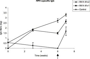 FIPV-specific IgG response in cats immunized once (MVA-M ×1, at week 0) or twice (MVA-M ×2, at weeks 0 and 3) with 10 8 pfu of MVA-M and challenged with FIPV 79-1146 (black arrow, at week 6). Titers correspond to the mean of each group. Control cats were unvaccinated.
