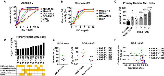 ISC-4 induces apoptosis in AML. (A,B) ISC-4-mediated apoptosis in human AML cell lines as the percentage of Annexin V + or Caspase-3/7 activity. (C) Increase in Annexin V + primary human AML cells after treatment (24 h) with ISC-4 ( n = 11) or cytarabine (AraC, n = 8). Data are the mean ± SEM, * P