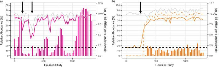 Relative abundance estimates can misrepresent actual concentrations due to shifts in total bacterial load. Examples of species-specific profiles in two participants for two different species L. crispatus , participant 06 (a), and Megasphaera , participant 17 (b). Vertical bars show the relative abundance (%, left y axis), solid lines indicate the absolute concentrations measured by qPCR, the gray line indicates the total bacterial load, and the dashed lines indicate inferred concentrations (all right y axis). The dashed black line indicates detection threshold for qPCR data (93.8 16S rRNA gene copies per swab). Arrows indicate time points when the relative abundance changes are discordant from the absolute concentration changes, which often occur when bacterial loads shift dramatically or when the relative abundance is low. Examples for the remaining species can be found in Fig. S2 .