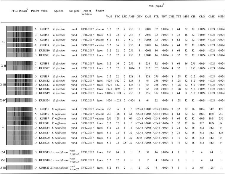 """Bacterial strains used in this study and their pulsed-field gel electrophoresis (PFGE) patterns and drug susceptibilities. The superscript italic """"a"""" indicates results of PFGE analysis of SmaI-digested DNA isolated from the locally spread strains. Pulse time varied from 5.3 to 34.9 s during the 20.0 h of electrophoresis. The superscript italic """"b"""" indicates the following abbreviations and definitions: VAN, vancomycin; TEC, teicoplanin; LZD, linezolid; AMP, ampicillin; GEN, gentamicin; KAN, kanamycin; STR, streptomycin; ERY, erythromycin; CHL, chloramphenicol; TET, tetracycline; MIN, minocycline; CIP, ciprofloxacin; CRO, ceftriaxone; CMZ, cefmetazole; MEM, meropenem. To determine the MICs, E. raffinosus strains were grown for 48 h because their growth rate was low."""