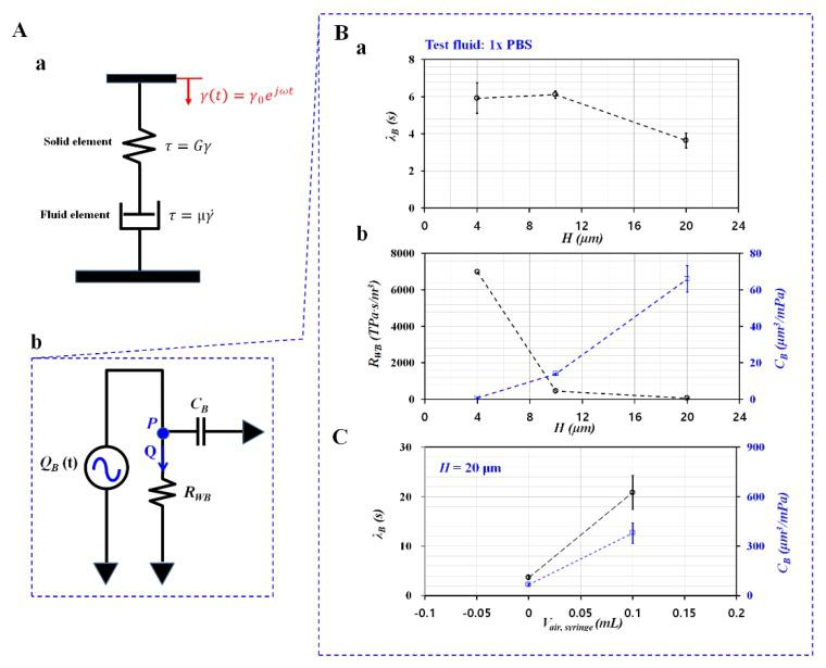 Mathematical representation and quantification of contributions of channel depth and air cavity to compliance. ( A ) Mathematical representation of conventional viscometer and microfluidic system. ( a ) Mathematical representation of conventional viscometer. ( b ) Mathematical representation of microfluidic system. ( B ) Evaluation of channel depth ( H ) on compliance. Here, <t>1x</t> PBS as test fluid was infused into a microfluidic system. ( a ) Variations of λ B with respect to H . ( b ) Variations of R WB and C B with respect to H . ( C ) Evaluation of air cavity on compliance.