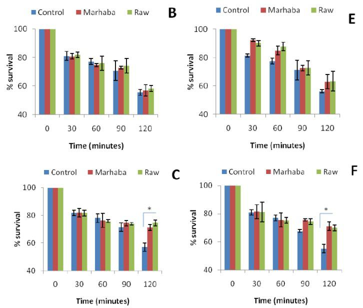 Effect of temperature (60 °C) in E. coli ATCC 10536 ( A , D ); S. Typhi ( B , E ) and K. pneumoniae ( C , F ) survival after the fourth passage of adaptation at ¼ × MIC ( A – C ) and the eighth until ½ × MIC ( D – F ) of branded and unbranded honey. ( p > 0.05); * ( p