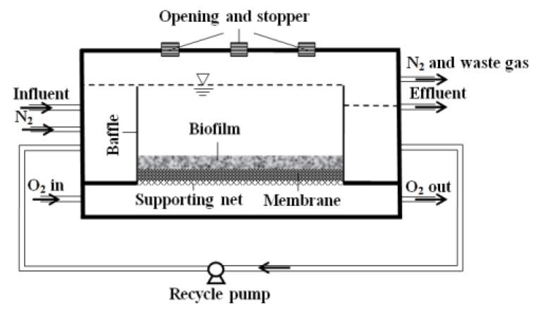 Setup of the membrane-aerated biofilm reactor (MABR).