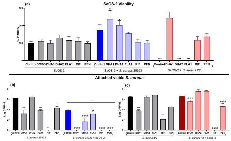 """Effect of the two DHA derivatives ( DHA1 and DHA2 ), the flavonoid derivative ( FLA1 ) and two control antibiotics ( RIF and PEN ) on competitive colonization on titanium coupons pre-incubated for 24 h with SaOS-2 cells. ( a ) Results corresponding to the viability of SaOS-2 cells when cultured on titanium coupons alone (SaOS-2, grey bars), or co-cultured with S. aureus ATCC 25923 (SaOS-2 + S. aureus 25923, blue bars), or P2 clinical S. aureus strain (SaOS-2 + S. aureus P2, red bars); ( b , c ) Results corresponding to the effects on attached viable S. aureus measured when the ATCC 25923 ( b ) or P2 clinical S. aureus strain ( c ) was used. Percentage of viability of SaOS-2 cells was calculated with respect to untreated controls after 24-h incubation on titanium coupons, using glow luminescence signal resulting from ATP production by viable SaOS-2 cells. Viable counts (log of CFU/mL) of S. aureus ATCC 25923 or the clinical strain P2 were also measured after 24-h incubation on titanium coupons when co-cultured with SaOS-2 cells. """"*"""" represents differences with the corresponding monoculture control and """"#"""" represents differences with the corresponding co-culture controls (* p"""