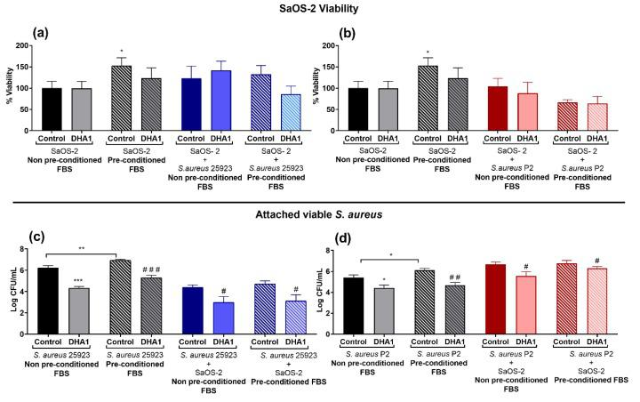"""Effect of the DHA derivative DHA1 on the competitive colonization assay performed in titanium coupons pre-conditioned with media supplemented with FBS. ( a , b ) Results corresponding to the viability of SaOS-2 cells when ATCC 25923 ( a , blue bars) or P2 clinical S. aureus strain ( b , red bars) were used. ( c , d ) Results corresponding to the effects of attached viable S. aureus measured when ATCC 25923 ( c , blue bars) or P2 clinical strain ( d , red bars) were used. The percentage of viability of SaOS-2 cells was calculated with respect to untreated controls after 24-h incubation on titanium coupons, using glow luminescence signal resulting from ATP production by viable SaOS-2 cells. Viable counts (log of CFU/mL) of S. aureus 25923 and the clinical strain P2, respectively, were also measured after 24-h incubation on titanium coupons when co-cultured with SaOS-2 cells. """"*"""" represents differences with the control in mono-culture exposed to the non-preconditioned titanium coupon (SaOS-2 non- preconditioned with FBS/ S. aureus 25923 non-preconditioned/ S. aureus P2 non-preconditioned). """"#"""" represents differences with the control of the subgroups (* p"""