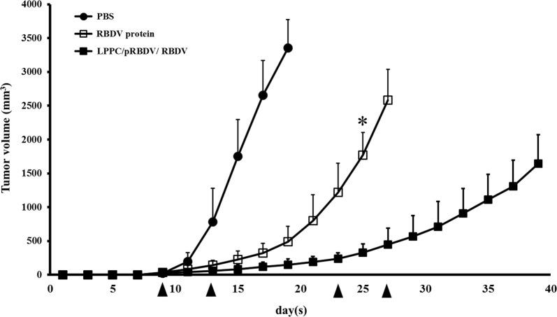 Inhibition of tumour growth by LPPC/pRBDV/RBDV and the RBDV protein. Female C57BL/6 mice (6–8 weeks of age) were subcutaneously inoculated with 1 × 10 6 cells in 100 mL of PBS. When the average tumour volume reached 30 mm 3 , the mice were i.v. injected with LPPC/pRBDV/RBDV or RBDV protein. Inverted filled triangle means the day of complex injection. Tumour volume was measured every 2 days after injection of the complexes, and the mice were sacrificed when the tumour grew to a size of 2500 mm 3 . LPPC, which encapsulated with RBDV or IgG1 Fc, were all complexed by PEG. The data represent the mean ± SD (n = 7). Significant differences are evaluated by Student's t -test and are labelled as *P