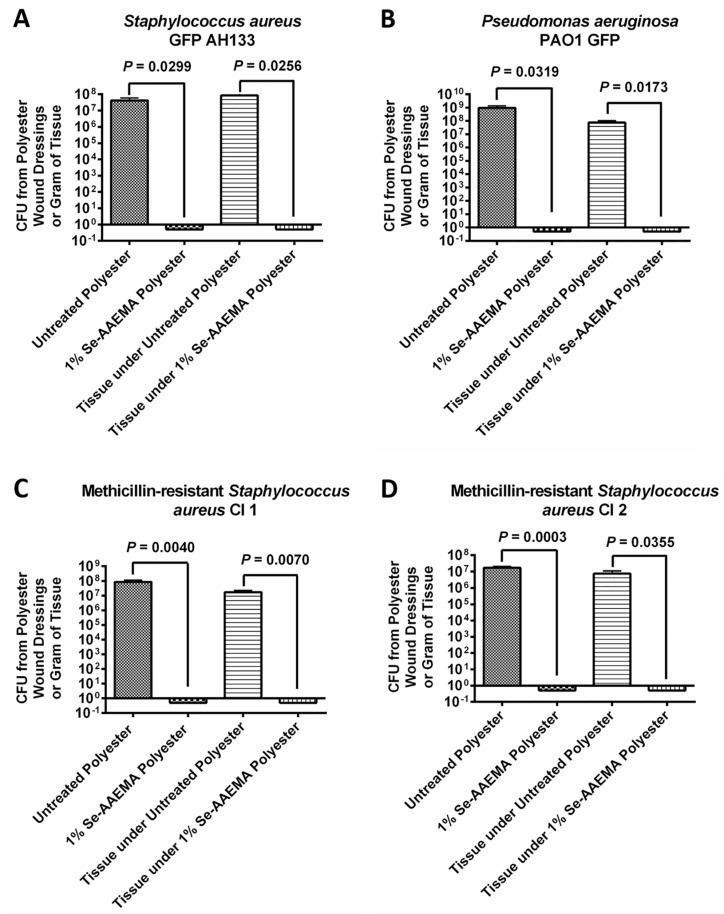 Graph of the colony-forming units of ( A ) Staphylococcus aureus GFP AH133, ( B ) Pseudomonas aeruginosa PAO1 GFP, ( C ) Methicillin-resistant Staphylococcus aureus CI 1, and ( D ) Methicillin-resistant Staphylococcus aureus CI 2 biofilms formed on the polyester dressings and in the tissue under the polyester dressings on a mouse wound. Values represent the means of six replicate experiments ± SEM. A two-tailed unpaired t test was used to determine statistical significance. Untreated polyester has AAEMA but no selenium.