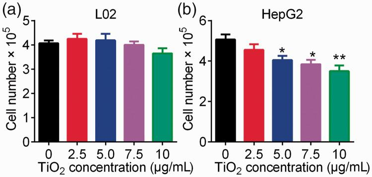 Influence of TiO 2 nanotubes on cell growth. L02 (a) and HepG2 (b) cells were incubated in TiO 2 nanotube-coated (2.5, 5.0, 7.5, and 10 µg/mL) <t>6-well</t> plates for 48 hours at 60°C. Cell numbers were counted using cell counting chambers. Cells incubated in 6-well plates coated with 0 µg/mL TiO 2 nanotubes were used as a control. * P