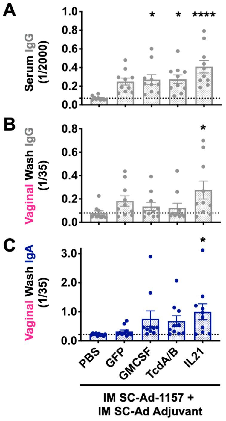 Effects of SC-Ad genetic adjuvants on clade C env antibody responses in mice after intramuscular (IM) immunization. Groups of 10 female BALB/c mice were immunized with PBS or 10 10 vp of the indicated SC-Ads. Six weeks later, samples were collected for ELISA vs. clade C CN54 gp140 ( A ) , ( B ), and ( C ) six week ELISAs after a single high dose IM immunization. Mean +/− SEM is shown. ( A ) 1/2000 sera dilutions detecting IgG. ( B ) IgG ELISA for 1/35 dilution of vaginal wash samples. ( C ) IgA ELISA for 1/35 dilution of vaginal wash samples. * p