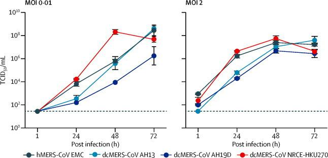 Replication kinetics of the human and camel MERS-CoV strains in Vero-E6 cells Vero-E6 cells were infected with the indicated viruses at multiplicity of infections of 0·01 and 2 and cultured at 37°C for 72 h. Culture supernatants were harvested at the indicated times, and virus titres were measured by TCID 50 assay. Results are presented as individual replicate (mean [SEM] for the three experiments). MOI=multiplicity of infection. TCID 50 =50% tissue culture infective dose.
