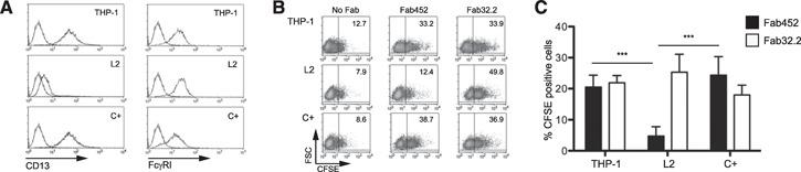 Phagocytosis in CD13‐deficient cells. THP‐1 (parental cell), L2 (THP‐1 CD13‐deficient cells), or C+ (THP‐1 transduction control) were incubated with 2 µg Fab fragments of mAb452 (anti‐CD13) and 8 µg Fab fragments of mAb32.2 (anti‐FcγRI) or without antibody for 30 minutes at 4°C. After washing, cells were incubated for 105 minutes at 37°C with CFSE‐labeled F(ab)′ 2 goat anti‐mouse‐opsonized erythrocytes (EBS‐Fab). Noningested erythrocytes were lysed, and samples were analyzed by flow cytometry to determine the percentage of CFSE‐positive cells. (A) Expression of CD13 or FcγRI was determined by flow cytometry by use of a secondary, FITC‐coupled goat‐anti mouse. (B) Representative dot plot of a single experiment. (C) Average of CFSE‐positive cells of 7 independent experiments. *** P