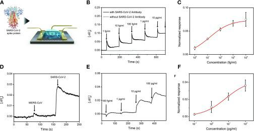 Detection of SARS-CoV-2 antigen protein. (A) Schematic diagram for the COVID-19 FET sensor for detection of SARS-CoV-2 spike protein. (B) Real-time response of COVID-19 FET toward SARS-CoV-2 antigen protein in PBS and (C) related dose-dependent response curve ( V DS = 0.01 V). Graphene-based FET without SARS-CoV-2 antibody is presented as negative control. (D) Selective response of COVID-19 FET sensor toward target SARS-CoV-2 antigen protein and MERS-CoV protein. (E) Real-time response of COVID-19 FET toward SARS-CoV-2 antigen protein in UTM and (F) related dose-dependent response curve.