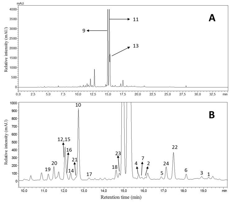 Chromatogram of the HPLC-DAD analysis of the diethyl ether subfraction ( A ) and an enlarged view ( B ) at λ 254 nm obtained from the methanolic extract of the aerial parts of D. diapensifolia . Analysis conditions: stationary phase: Phenomenex Aqua C18 5 µm, 250 × 4.6 mm; mobile phase: A = H 2 O + 0.02% TFA, B = acetonitrile; gradient: 0 min: B = 2%; 20 min: B = 50%; 40 min: B = 98%; 50 min B = 98%; T: 35 °C; flow: 1 mL/min; sample concentration and injection volume: 8 mg/mL, 10 µL.