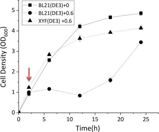 Growth curves of BL21(DE3) and XYF(DE3) under sabinene stress. Squares represent the growth of BL21(DE3) without sabinene stress. Circles and triangles represent the growth of BL21(DE3) and XYF(DE3) with 0.6 g/L sabinene. After 2.5 h of cultivation, sabinene was added to a final concentration of 0.6 g/L. Cell density was monitored for 24 h. The experiments were carried out in triplicates. Error bars represent the standard deviation from the mean