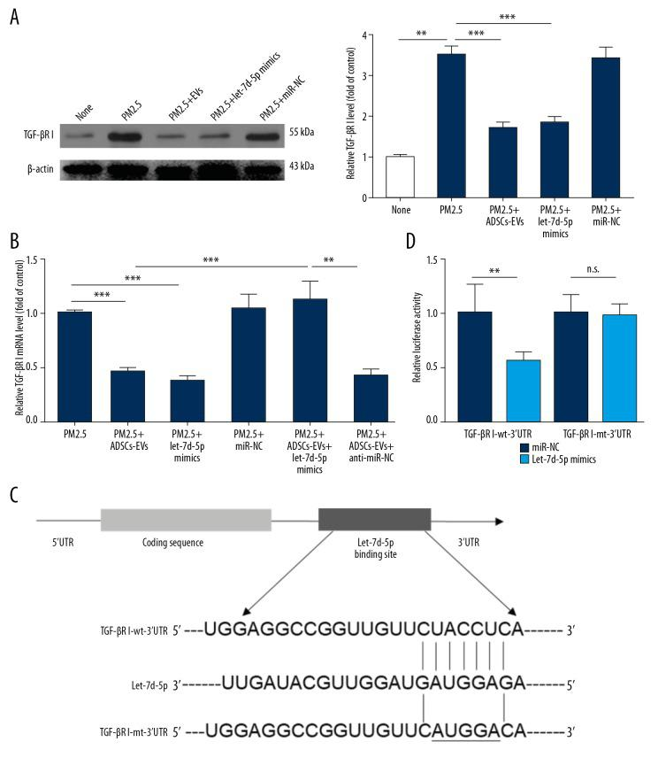 """let-7d-5p directly inhibited the expression of TGF-βRI. ( A ) The expression of TGF-βRI under different treatments was tested by Western blotting. ( B ) The expression of TGF-βRI mRNA under different treatments was tested by <t>qRT-PCR.</t> ( C ) Schematic representation of matching sequence between TGF-βRI 3′UTR mRNA and let-7d-5p. ( D ) Luciferase activity of ATII cells co-transfected with reporter plasmid (""""TGF-βRI wt"""" or """"TGF-βRI mt"""") and let-7d-5p or miRNA-NC. (* p"""