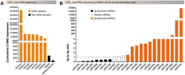 UESL tumors hyperexpress C19MC miRNAs with selective upregulation of 5p or 3p mature miRNAs. A, Small RNA-seq showing overexpression of C19MC miRNAs in UESL tumors compared to normal liver sample or Hep3B cell line. The bar graphs represent the cumulative expression of all 46 C19MC miRNAs (5p and 3p). B, 24 C19MC miRNAs that have 5p and 3p mature miRNA information in UESL tumors display miRNA-specific selective 5p vs. 3p expressional patterns.