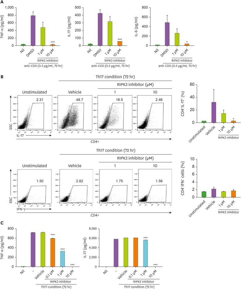 RIPK3 inhibitor treatment downregulates Th17 cell differentiation and inflammatory response. (A) Normal splenocytes were treated with DMSO or RIPK3 inhibitor and stimulated with anti-CD3 for 72 h. The expression of IL-6, IL-17, and TNF-α in culture supernatants was measured using ELISA. Statistical analyses were conducted using the nonparametric Mann-Whitney U test. (B) Splenocytes from mice with collagen-induced arthritis were cultured under Th17 conditions for 72 h and then the population of CD4 + IL-17 + cells was quantified. (C) IL-17 and TNF-α expression in culture supernatants was measured using ELISA. The data represent the mean±SD from 3 independent experiments. SSC, side scatter. * p