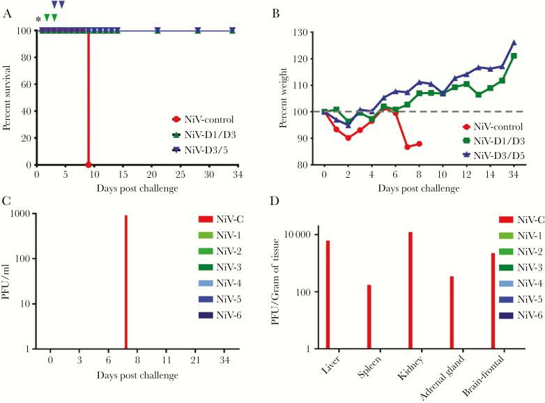(A) Kaplan-Meier survival curve for Nipah virus (NiV)-challenged ferrets treated with h5B3.1. Red NiV control (n = 1), green D1/D3 cohort (n = 3), and blue D3/D5 cohort (n = 3). Asterisk = NiV challenge day; green nabla, 5B3.1 treatment day for D1/D3 cohort; and blue nabla, treatment day for D3/D5 cohort. (B) Percentage weight from day 0 post-NiV challenge. Red NiV control (n = 1), green D1/D3 cohort (n = 3), and blue D3/D5 cohort (n = 3). (C) Plaque-forming units (PFU) per mL isolated from whole blood on indicated days after NiV challenge. (D) The PFU per gram of tissue at the study end point for each NiV-challenged ferret in the study. NiV-C = control; NiV-1–3 green, D1/D3 cohort; and NiV-4–6 blue, D3/5 cohort.