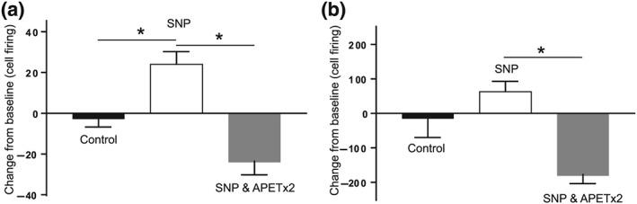 APETx2 blocks NO‐induced sensitisation to noxious stimuli. There was a significant overall difference in durovascular‐evoked trigeminal nucleus caudalis neuronal activation across all groups. Sodium nitroprusside (SNP) induced increased durovascular‐evoked responses (a) when compared to vehicle control treated rats. Pretreatment with APETx2 significantly reduced the SNP‐induced increase in durovascular‐evoked responses (a). There was a significant overall difference in noxious pinch‐evoked trigeminal nucleus caudalis neuronal activation (b) across all groups. Sodium nitroprusside induced a non‐significant modest increase in noxious pinch‐evoked responses (b) when compared to vehicle control treated rats. Pretreatment with APETx2 significantly reduced the noxious pinch‐evoked responses when compared to SNP treated rats (b). * P