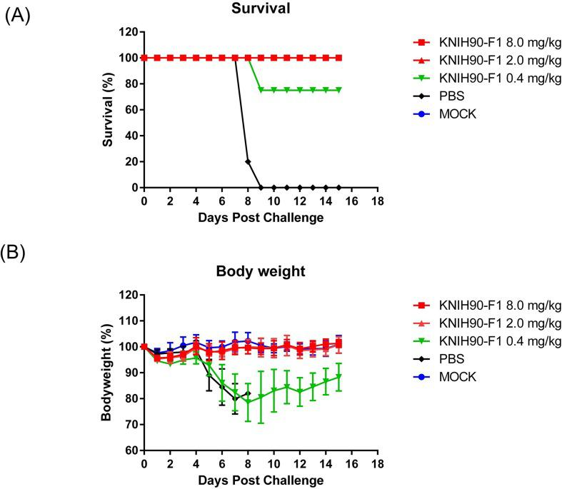 MERS-CoV RBD-specific mAb protects mice from lethal challenge. Five hDPP4 TG mice were intraperitoneally administered different doses of KNIH90-F1 24 h after intranasal inoculation with the MERS-CoV KNIH-002 strain (1 × 10 5 pfu/30 μl). Body weight change (A) and survival (B) were monitored for 14 days.