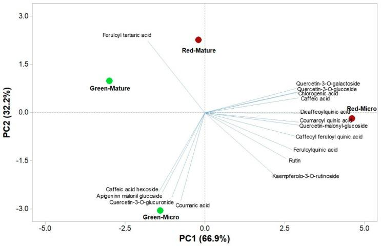 Principal component loading plot and scores of PCA of phenolic compounds quantified by HUPLC-Q-Orbitrap HRMS analysis in green and red microgreens and mature leaves of Salanova lettuce.