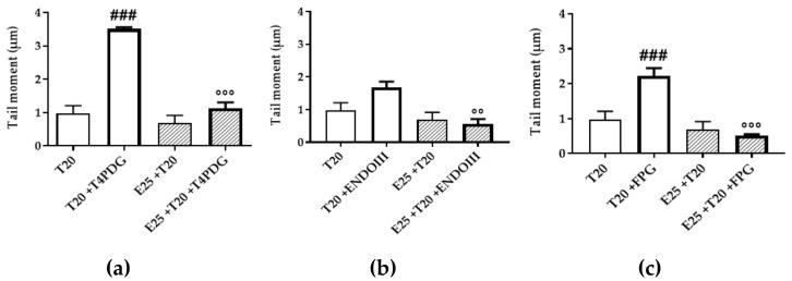 Characterization of genotoxic damage induced by UV-A, and mERC extract's role. Modified Comet assay measured direct DNA damage using ( a ) T4 PDG enzyme recognizing CPDs; indirect i.e., oxidative damage was identified by ( b ) ENDO III for oxidized pyrimidines or ( c ) FPG for oxidized purines. HMEC-1 cells were treated for 1 h with mERC (25 μg/mL, E25) and exposed to 20 J/cm 2 UV-A (T20). Results are expressed as mean of medians ± SEM, n = 3. Statistical analysis: One-Way ANOVA with Bonferroni's post hoc analysis. ### p