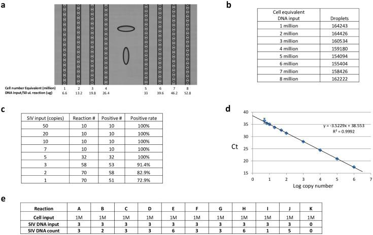"""SIV ddPCR DNA assay characterization. (A) Sample DNA input tolerance at the droplet formation step. Droplet integrity was monitored by examining a portion of the droplets in each lane as they moved through the Source instrument during dropletization. In addition, total droplet number for each input level after dropletization (retrieved from the """"RainDrop Run Completion"""" screen) served as another indicator of sample DNA input tolerance. DNA sample used was duodenum DNA from Rhesus macaque 313–08. (B) Total number of droplets generated during dropletization remains constant in the range of tissue DNA amount tested (1 million to 8 million cell equivalent input). Total droplet number for each sample after dropletization serves as an additional indicator of sample DNA input tolerance. Note that for each level of DNA input, only a fraction (~1.6%) of the droplets were counted for QC purpose by the Source machine. (C) Estimation of the limit of detection (LoD) of the ddPCR assay based on the Digital MIQE Guidelines [ 7 ]. According to the guidelines, when running costs preclude optimization using ddPCR, qPCR can be used to determine certain assay parameters. (D) Performance of the SIV ddPCR assay in TaqMan genotyping mastermix in qPCR format. SIV gag DNA standard was diluted with buffer diluent. The standards were assayed as described in Materials and Methods in the following replicate format: 1 million down to 100 copies input per reaction: each in triplicates; 50, 20, 10, 7 and 5 copies input per reaction: each in 10 replicates. The data were plotted and analyzed according to the routine analyses provided in the software package with the ABI 7500 SDS instrument. (E) Instead of measuring 60 ddPCR replicates to obtain 95% confidence, we obtained an approximate estimation of the LoD using a lower number of ddPCR reaction replicates and required the false negative rate to be below 5% (i.e. all 10 replicates have to be positive)."""