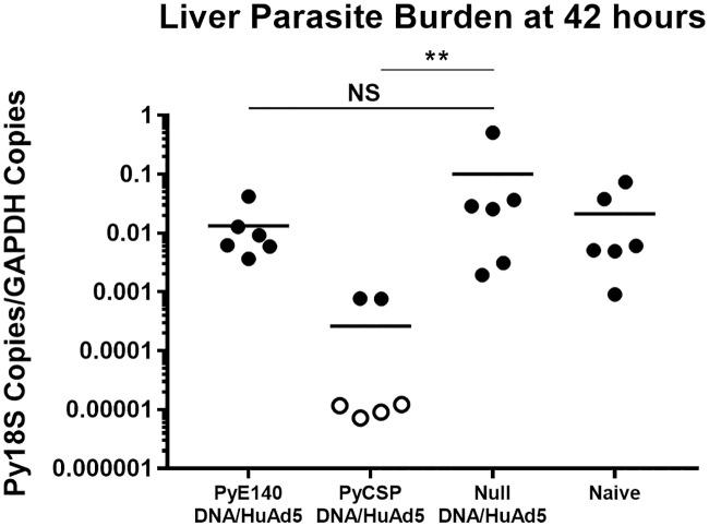 PyE140 immunization does not reduce liver stage parasite burden. Eleven week old CD1 mice were immunized with DNA and HuAd5 vectors expressing either PyE140 or PyCSP at weeks 0 and 6, respectively. The HuAd5-PyE140 vector encoded the codon-optimized PyE140co gene. Groups of null immunized and naïve mice were also included. Two weeks after the boost, mice were challenged with 20,000 P . yoelii 17XNL sporozoites by subcutaneous injection. Livers were harvested 42 hours after challenge for evaluation of Py18S RNA copies/murine GAPDH RNA copies by RT-qPCR. Filled symbols represent detectable Py18S RNA copies, and open symbols represent Py18S RNA copies below the limit of detection (10 copies of Py18S RNA) and are plotted at ½ the limit of detection (5 copies of Py18S RNA). ** indicates p