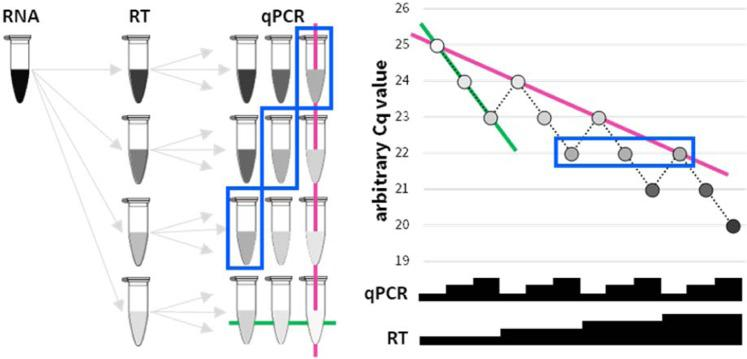 A schematic of the experimental design and Cq values of a hypothetical ideal qPCR amplification. A series of 2-fold dilutions of an RNA sample are reverse transcribed (RT), and 2-fold dilutions of each resulting cDNA are analysed by qPCR. Colour intensity of tube (left) and corresponding circle (right) represents predicted amplicon abundances. Samples boxed in blue (left and right) exemplify a set of samples expected to harbour identical Cq values. Relative input quantities are depicted as black steps (right; not to scale). Solid green lines connect samples of one ideal qPCR titration curve (-1 Cq per 2-fold increased input of cDNA in qPCR). Solid pink lines connects the samples of a similar ideal RT titration curve (-1 Cq per 2-fold increased input of RNA in RT).