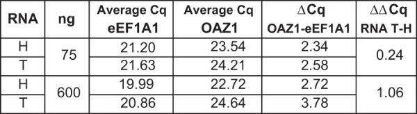 qPCR analysis of RNA from two cell lines (H and T) using iScript RT performed with either 75 or 600 ng RNA. Differential expression of OAZ1 relative to eEF1A1 is calculated using the ΔΔCq method.