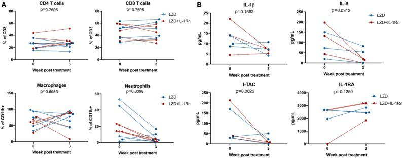 LZD and LZD_IL-1Rn reduce inflammatory signatures in BAL. Bronchoalveolar lavages (BAL) were acquired pre-treatment and 3 weeks post-treatment with LZD (blue) or LZD+IL-1Rn (red). (A) Cells were analyzed by flow cytometry to determine frequency changes in CD4 T cells (CD3+CD4+), CD8 T cells (CD3+CD8+), macrophages (CD11b+CD206+), and neutrophils (CD11b+Calprotectin+). Wilcoxon signed rank test was performed to determine differences before and after drug treatment, regardless of group (LZD and LZD+IL-1Rn combined). (B) BAL fluid was concentrated <t>10X</t> and assessed by multiplex assay for changes in inflammatory cytokines and chemokines for a random subset of samples ( n = 3 per treatment group). Wilcoxon signed rank test was performed to determine differences before and after drug treatment, regardless of group (LZD and LZD+IL-1Rn combined).