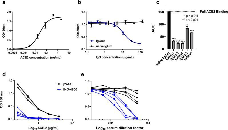 INO-4800 immunized mouse and guinea pig sera compete with ACE2 receptor for SARS-CoV-2 Spike protein binding. a Soluble ACE2 receptor binds to CoV-2 full-length spike with an EC 50 of 0.025 µg/ml. b Purified serum IgG from BALB/c mice ( n of 5 per group) after second immunization with INO-4800 yields significant competition against ACE2 receptor. Serum IgG samples from the animals were run in triplicate. c IgGs purified from n = 5 mice day 7 post second immunization with INO-4800 show significant competition against ACE2 receptor binding to SARS-CoV-2 S 1 + 2 protein. The soluble ACE2 concentration for the competition assay is ~0.1 µg ml −1 . Bars represent the mean and standard deviation of AUC for curves displayed in Supplementary Fig. 1 . d Hartley guinea pigs were immunized on Day 0 and 14 with 100 µg INO-4800 or pVAX-empty vector as described in the methods. Day 28 collected sera (diluted 1:20) was added SARS-CoV-2 coated wells prior to the addition of serial dilutions of ACE2 protein. Detection of ACE2 binding to SARS-CoV-2 S protein was measured. Sera collected from 5 INO-4800-treated and 3 pVAX-treated animals were used in this experiment. e Serial dilutions of guinea pig sera collected on day 21 were added to SARS-CoV-2 coated wells prior to the addition of ACE2 protein. Detection of ACE2 binding to SARS-CoV-2 S protein was measured. Sera collected from 4 INO-4800-treated and 5 pVAX-treated guinea pigs were used in this experiment.