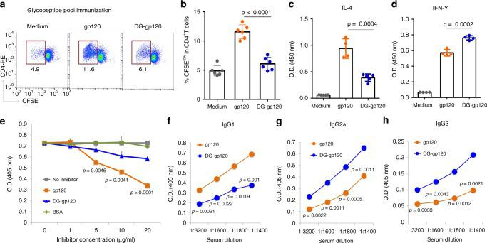 gp120 glycopeptide epitopes are recognized by CD4+ T cells. BALB/c mice were immunized with pooled gp120 glycopeptides (prepared by protease digestion of gp120). After booster immunization, CD4 + T cells were isolated and stimulated in vitro with either intact gp120 or PNGase F–treated, deglycosylated gp120 (DG-gp120) in the presence of mitomycin C-treated APCs for 5 days. a , b Flow cytometric analysis of T cell proliferation by CFSE division among CD4 + T cells. c , d Production of IL-4 c and IFN-γ d in the culture supernatant after T cell stimulation was measured by ELISA. e Recognition of coated gp120 by antiserum from mice immunized with gp120 glycopeptides in the presence of the indicated inhibitors was examined by competition ELISA using a serum dilution 1:1600. Serum titers are reported as OD at 405 nm. f – h Serum from mice immunized with pooled gp120 glycopeptides were collected 7 days after booster immunization. Titers of IgG1 f , IgG2a g , and IgG3 h for recognition of glycosylated gp120 or deglycosylated gp120 were measured by ELISA. Representative results are shown from one of three independent experiments performed. (mean ± s.d.). b n = 6 independent experiments. c n = 5 for medium and DG-gp120; n = 4 for gp120. n = 4, 3, 2, 2, 2 independent experiments for d – h , respectively. P -values were determined using Student's two-sided t -tests. Source data are provided as a Source Data file.