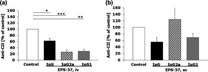 Differential effect of intravenous and subcutaneous administration of EPS-37 on the production of CII-specific IgG in the course of CIA. Mice immunized with CII in the presence of CFA (day 0, first immunization, sc) and with CII in the presence of LPS (day 21, second immunization, ip) were given EPS-37 systemically, intravenously ( a ) or subcutaneously ( b ) three times a week starting on the day of second immunization (day 21) till the end of the experiment. The level of anti-CII antibodies: IgG (black bars), IgG2a (hashed bars), IgG1 (gray bars) in serum is shown as a percentage of positive control (saline injected mice; white bars). Data represent one out of three similar experiments. Results are expressed as a mean of the measurements of each individual mouse serum ± SEM. * P