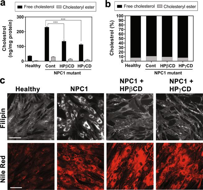 HPγCD alleviates cholesterol accumulation in NPC1 fibroblasts. Skin fibroblasts from a healthy donor (Healthy) or NPC1 patient (NPC1) were treated for 72 h with HPβCD (1 mM) or HPγCD (1 mM) and then examined for cholesterol and neutral lipid content. The levels of cholesterol in cell lysates were measured by cholesterol assay ( a , b ) in a reaction mixture with (for total cholesterol content) or without (for free cholesterol content) cholesterol esterase enzyme. The intracellular accumulation of free cholesterol and neutral lipid were evaluated by staining with Filipin and Nile Red, respectively ( c ). Data are mean ± S.E.M. of triplicates and a representative of three independent experiments. Symbols indicate the relative level of significance compared with the control (***P