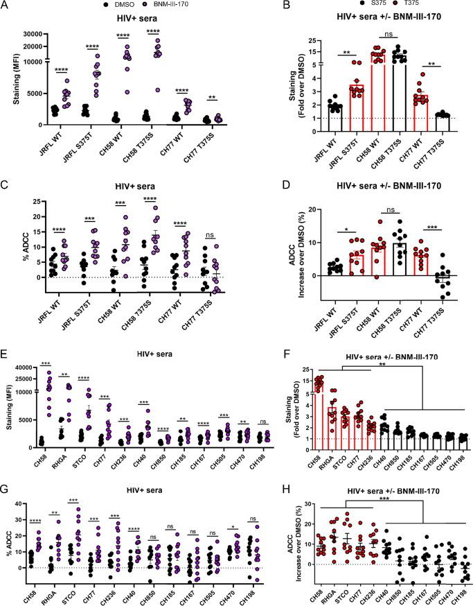 Primary viruses harboring a T375 residue are highly susceptible to ADCC responses mediated by HIV + sera in the presence of CD4mc. Primary CD4 + T cells were infected with clade B primary HIV-1 and their variants (A to D) or with a panel of TF and chronic viruses from clades B and C (E to H). At 48 h postinfection, cell surface staining was performed with 10 different HIV + sera. The graphs shown represent (A and E) the compiled mean fluorescence intensities (MFI) obtained with 10 HIV + sera and (B and F) the fold increase in MFI in the presence of CD4mc calculated on the infected (p24 + ) population. Infected primary CD4 + T cells were also used as target cells, and autologous PBMCs were used as effector cells in a FACS-based ADCC assay. The graphs shown represent (C and G) the ADCC values and (D and H) the increases (in percentage points) in the levels of ADCC obtained in the presence of CD4mc with 10 HIV + sera. These results were obtained in at least 2 independent experiments. Error bars indicate means ± SEM. Statistical significance was tested using a paired t test or a Wilcoxon signed-rank test (A to E and G) or an unpaired t test or Mann-Whitney U test (F and H), based on statistical normality (*, P