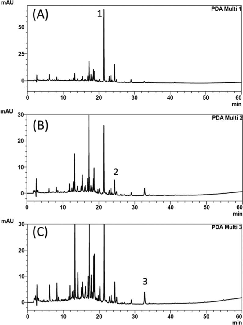 HPLC chromatograms of brand E extracts after 100-fold dilution. (A) Baicalin (8.27 μg/mL), retention time: 21.4 min, detection wavelength: 276 nm; (B) berberine (0.81 μg/mL), retention time: 24.4 min, detection wavelength: 238 nm; and (C) rhein (0.60 μg/mL), retention time: 32.7 min, detection wavelength: 228 nm. 1: baicalin, 2: berberine, and 3: rhein.