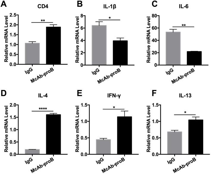 Systemic blockade of proBDNF restored meningeal pro-inflammatory microenvironment in septic mice. Mice were i.p. injected with proBDNF 30 min before LPS (5 mg kg −1 ) injection. Meninges were harvested 5 days after LPS injection for qPCR. a The level of CD4 gene expression was higher in the meninges of the McAb-proB group than in IgG controls in septic mice. b–f Gene levels were significantly lower in b IL-1β and c IL-6 but higher in d IL-4, e IFN-γ, and f IL-13 in the meninges after LPS injection in the McAb-proB group as compared to IgG control. n = 5 in each group. All experiments were performed at least in triplicate. Data were analyzed by unpaired T test, * P