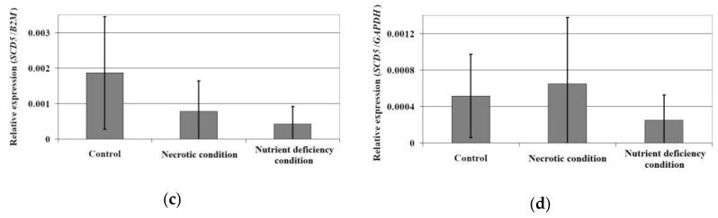 The effect of necrotic condition or nutritional deficiency on the mRNA expression of SCD ( a , b ) and SCD5 ( c , d ). Human brain (glioblastoma astrocytoma) U-87 MG cell line cultured in eagle's minimum essential medium (EMEM) with 10% fetal bovine serum (FBS), 2 mM l -glutamine, 1 mM sodium pyruvate, 1% non essential amino acids, 100 U/mL penicillin, and 100 µg/mL streptomycin. U-87 MG cells were seeded in 6-well plates. After 72 h incubation, cells were washed three times with phosphate-buffered saline (PBS) solution and cultured for 24 h under three different conditions (control, nutrient deficiency, and necrotic). Control cells were suspended in full medium, starved cells were grown in medium with a low concentration of l -glutamine (0.2 mM) and without sodium pyruvate. For the induction of necrotic conditions, cells were incubated in medium supplemented with 200 µM H 2 O 2 . After 24 h of incubation, the cells were trypsinized and analyzed using qRT-PCR. **—statistically significant difference in the expression of a given desaturase between the tumor area according to the Wilcoxon signed-rank test ( p