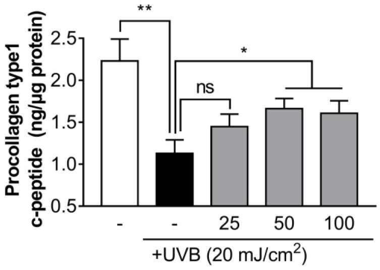 The effect of decanal on UVB-induced collagen degradation in <t>Hs68</t> dermal fibroblasts. The collagen content was measured in the supernatant of Hs68 cells treated with either the vehicle or 25, 50 and 100 μM decanal for 24 h after UVB exposure. The final procollagen type I level was normalized to the total cellular protein content. Data are shown as the mean ± SEM ( n = 3). Significant differences are indicated as * p