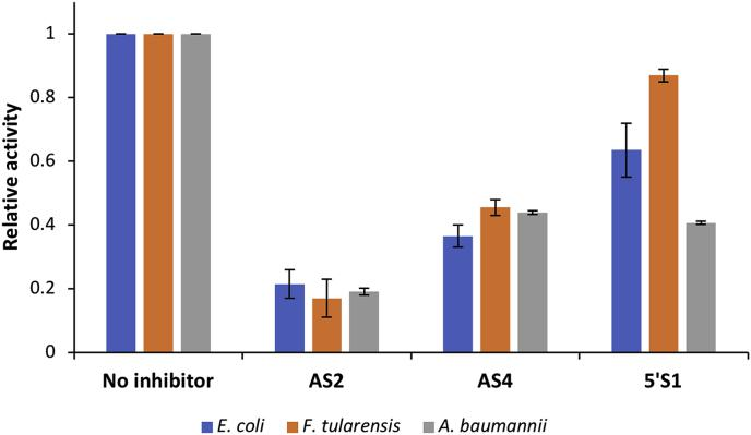 Inhibition of F. tularensis and A. baumannii RNase E NTDs by AS2, AS4 and 5′S1. The relative rates of cleavage of 1 μM modified target-guide substrate by 5 nM E. coli (blue), F. tularensis (orange) or A. baumannii (grey) RNase E NTD in the absence of inhibitor and in the presence of either 2 mM AS2, AS4 or 5′S1. For each RNase E NTD, the data have been normalised to the cleavage rate when there was no inhibitor present. Data are the average from duplicate experiments and the error bars represent the standard error of the mean. . (For interpretation of the references to colour in this figure legend, the reader is referred to the Web version of this article.)