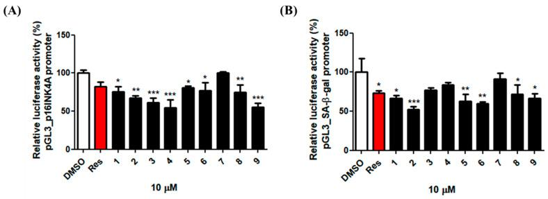 Effects of compounds 1 – 9 (10 μM) on the p16INK4A and GLB1 transcription in the human dermal fibroblasts. Human dermal fibroblasts were transiently co-transfected with the <t>pGL3-p16INK4A</t> ( A ) or pGL3-GLB1 ( B ) promoter with β-galactosidase as a transfection control. Cells were treated overnight with the compounds 1 – 9 (10 μM). The luciferase activity was determined as the ratio of the firefly/Renilla luciferase activities. The activities of the p16Ink4A promoter and the GLB1 promoter in the presence of the compounds 1 – 9 relative to that in the absence of the compounds 1 – 9 are shown. * p